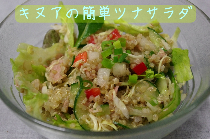 easy-tuna.salada