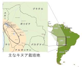 bolivia en sudamerica
